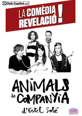 Animals de companyia → Club Capitol