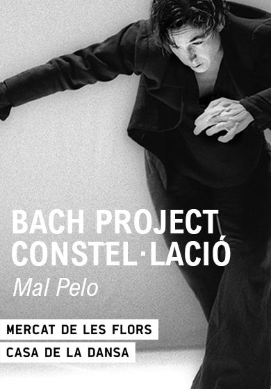 Bach Project Constel·lació